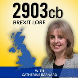 Listen here at: Catherine Barnard podcast: Brexit delayed